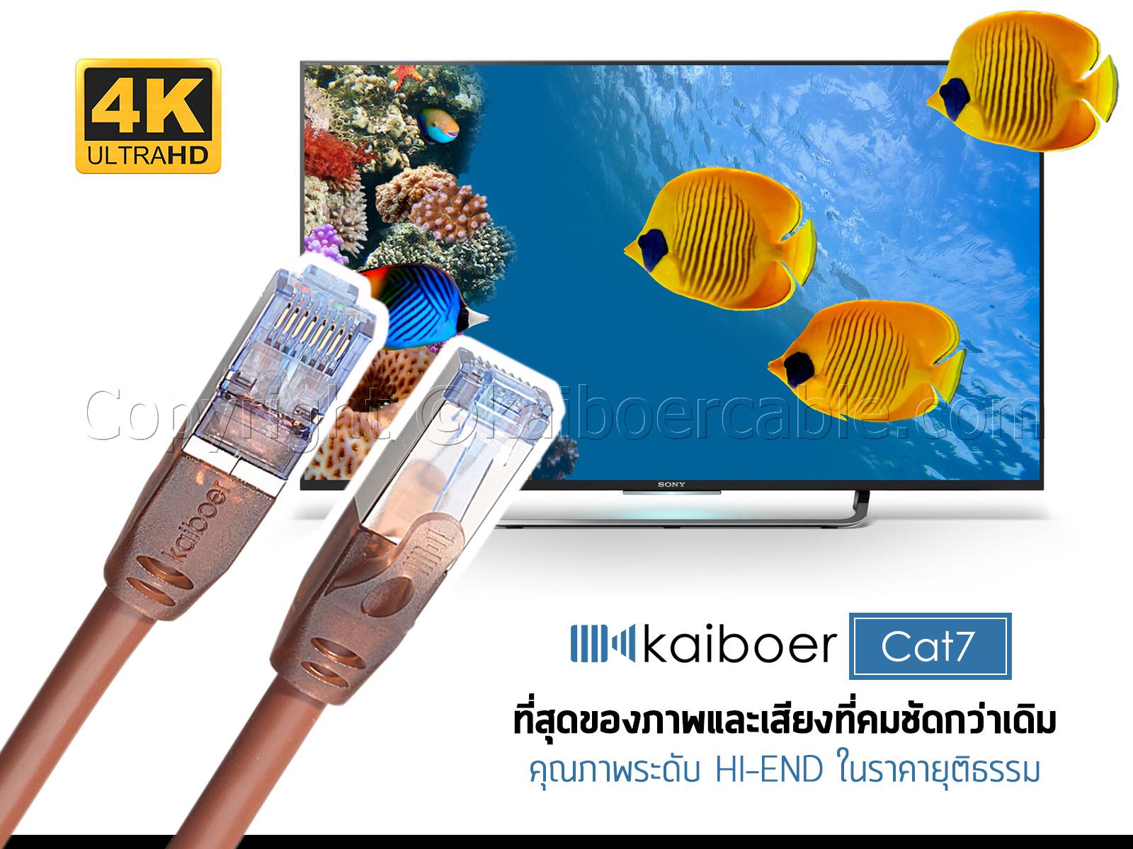 Kaiboer_Cat7_1