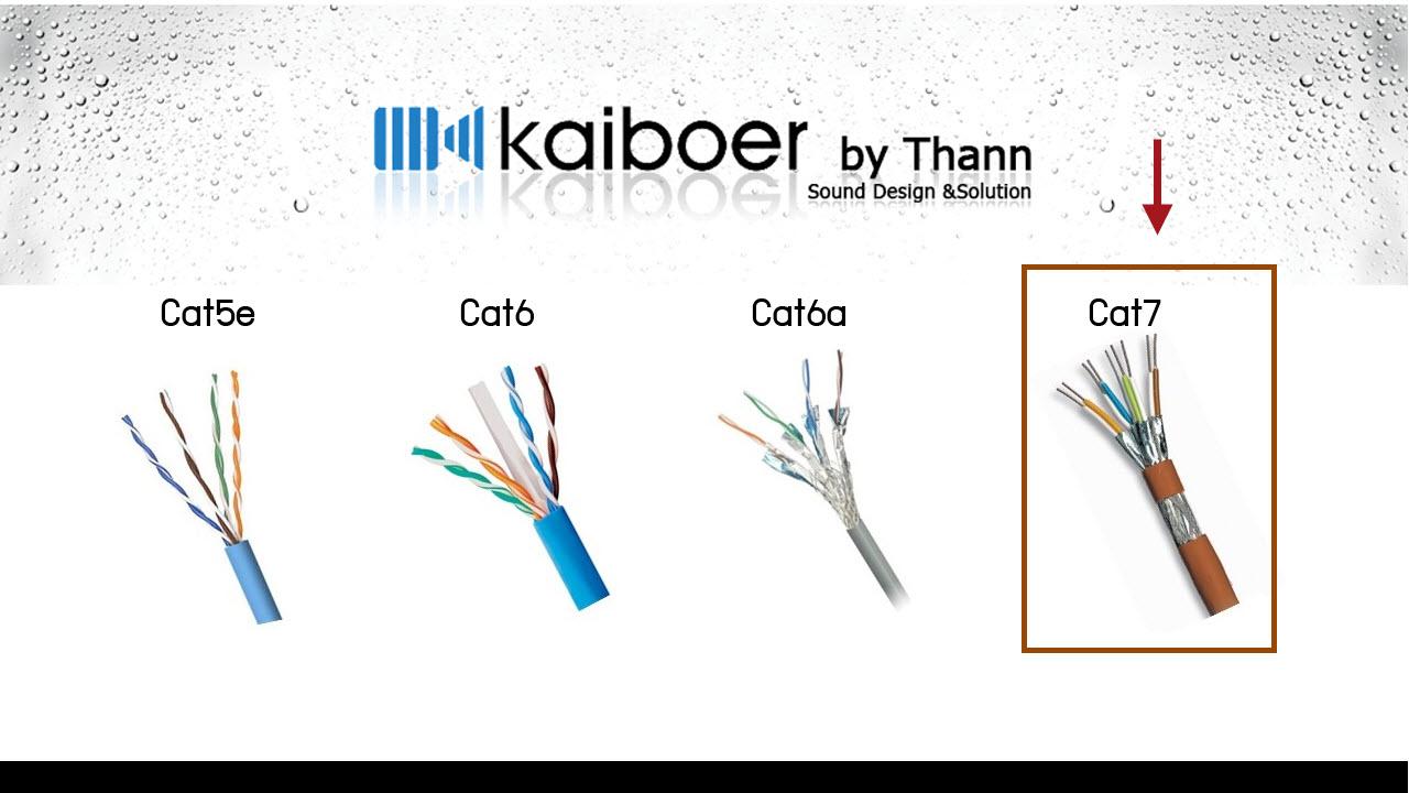 Kaiboer_Cat7_1_1